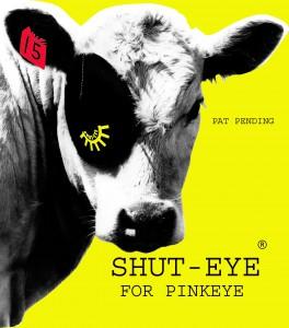 shut-eye for pinkeye